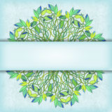 Vector card with floral symmetrical ornament Royalty Free Stock Photo