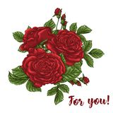 Vector card with garden white and red roses and tulip flowers on white background. Romantic design for natural cosmetics Royalty Free Stock Photo