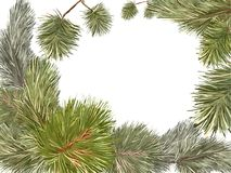 Pine tree frame. Vector card with hand-drawn New Year`s festive branches of pine and a Christmas tree, with a place for inscriptions in the center Stock Images