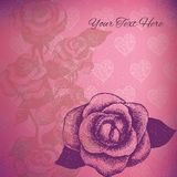 Vector card with hand drawn roses Royalty Free Stock Images