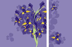 Vector card heart from irises Royalty Free Stock Photography