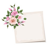 Vector card with pink roses. Eps-10. Royalty Free Stock Images