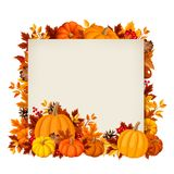 Vector card with pumpkins and autumn leaves. Royalty Free Stock Photo