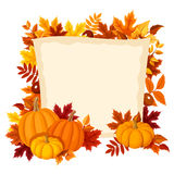 Vector card with pumpkins and autumn leaves. Vector illustration. Royalty Free Stock Image