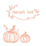Vector card with sketched pumpkins. Vector card with two orange sketched pumpkins. can be used as harvest fest card Stock Photos