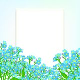 Vector card with small blue flowers Stock Image