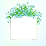 Vector card with small blue flowers Stock Photo