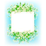 Vector card with small white flowers Royalty Free Stock Photography