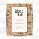 Vector card with spices and place for your text Royalty Free Stock Photography