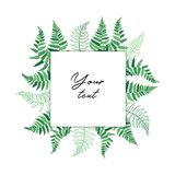 Vector card template with fern leaf. Vector template illustration with fern leaf. Isolated outline drawing. Modern illustration of tropical plant. Card with Stock Photography