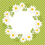 Vector Card Template with a Floral Wreath on Polka Dot Background. Vector Summer Wreath with Daisy. Stock Image