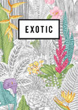 Vector card vintage. Exotic flowers and plants. Stock Images
