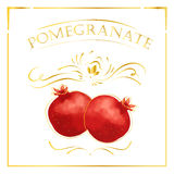 Vector card in vintage style with pomegranate. Stylized drawing with golden lines on white background Stock Image