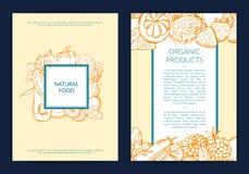 Vector cartão handdrawn das frutas e legumes, folheto, molde do inseto ilustração royalty free