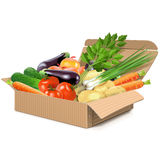 Vector Carton Box With Vegetables Stock Images