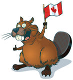 Vector Cartoon Beaver with Canadian Flag. Vector cartoon clip art of a cute, happy cartoon beaver waving a Canadian flag stock illustration