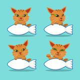 Vector cartoon character cute cat with big fish sign Royalty Free Stock Image