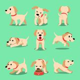 Vector cartoon character labrador dog poses. For design Stock Images