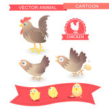 Vector cartoon chicken cute-illustration Royalty Free Stock Photo