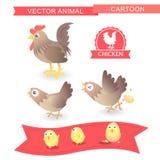 Vector cartoon chicken cute-illustration. Cartoon chicken cute design and have icon Royalty Free Stock Photo