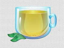 Vector cartoon clear glass cup of green tea. Trancparent cup and leaf Royalty Free Stock Images