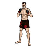 Vector Cartoon Color Illustration - Muscular MMA Fighter. In Shorts and Gloves Stock Images