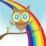 Vector cartoon cute little owl bird on tree branch Royalty Free Stock Images