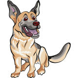 Vector Cartoon dog German shepherd breed Royalty Free Stock Image