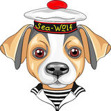 Vector cartoon dog Jack Russell Terrier sailor Stock Image