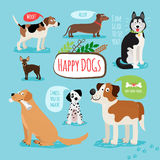 Vector cartoon dogs Stock Images