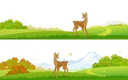Autumn deer backgrounds