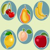 Vector cartoon flat doodles style fruits. Royalty Free Stock Photography
