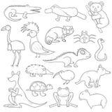 Vector cartoon hand drawn australian animals Stock Photo