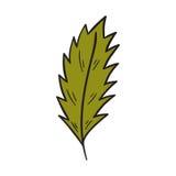 Vector cartoon hand drawn green autumn leaf Royalty Free Stock Photography