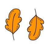 Vector cartoon hand drawn orange autumn leaf Royalty Free Stock Images