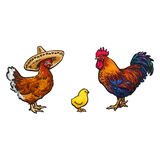 Vector sketch hand drawn chicken set isolated. Vector cartoon hand drawn sketch chicken set. Brown blue colored rooster, cock, brown chicken in sombrero and Stock Image