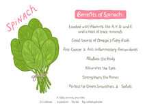 Vector cartoon hand drawn spinach health benefits Stock Images