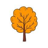 Vector cartoon hand drawn yellow autumn tree Royalty Free Stock Images