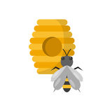 Vector cartoon hive with bee Stock Image
