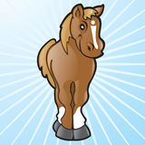 Vector Cartoon Horse Stock Photo