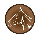 Vector cartoon horse head. 2014 - Year of the Horse Royalty Free Stock Image