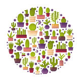 Vector cartoon house plant cactus background Royalty Free Stock Images