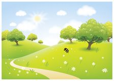 Vector cartoon illustration of a beautiful spring sunny meadow.  Royalty Free Stock Images
