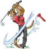 Vector Cartoon Mascot Dog Swinging Golf Club. Vector cartoon clip art illustration of an anthropomorphic brown dog mascot wearing a shirt and pants swinging a stock illustration