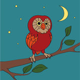 Vector cartoon night owl Stock Photos