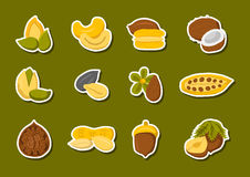 Vector cartoon nuts and seeds icons Royalty Free Stock Images