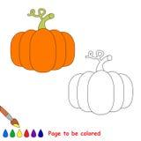 Vector cartoon orange pumpkin to be colored. Royalty Free Stock Image