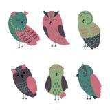 Vector cartoon owls. Set of cartoon owls in beautiful colors Stock Images