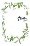 Vector with cartoon peas  and calligraphic elements. Royalty Free Stock Photos