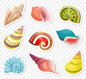 Vector cartoon sea shells stickers set on the transperant alpha background. Royalty Free Stock Images